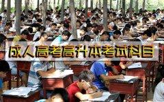 成人高考高升本考试科目有哪些?