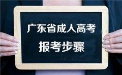 2020年广东省成人高考报考步骤一览表
