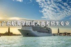 广东航海学院成人高考招生专业