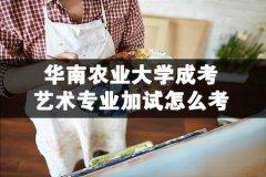华南农业大学成考艺术专业加试怎么考