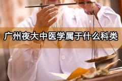 广州夜大中医学属于什么科类