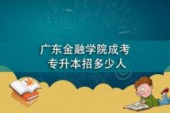 广东金融学院成考专升本招多少人