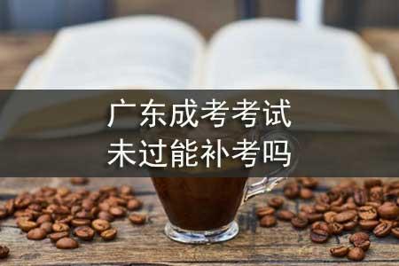 广东成考考试未过能补考吗