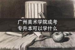 广州美术学院成考专升本可以学什么
