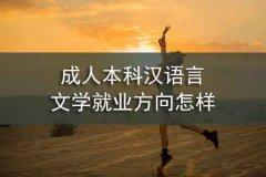 成人本科汉语言文学就业方向怎样