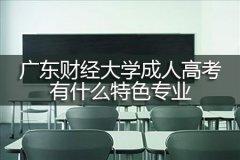 广东财经大学成人高考有什么特色专业