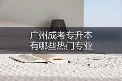 广州成考专升本有哪些热门专业
