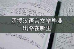 函授汉语言文学毕业,出路在哪里