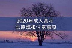 2020年成人高考志愿填报注意事项