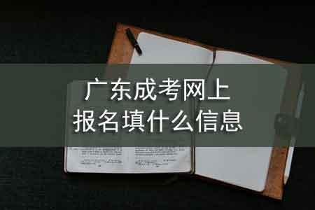 广东成考网上报名填什么信息