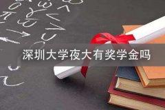 深圳大学夜大有奖学金吗