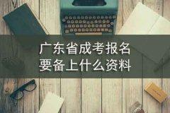 广东省成考报名要备上什么资料