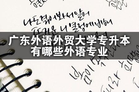 广东外语外贸大学专升本有哪些外语专业-第1张图片-专升本网