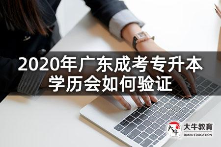 2020年广东成考专升本学历会如何验证-第1张图片-专升本网