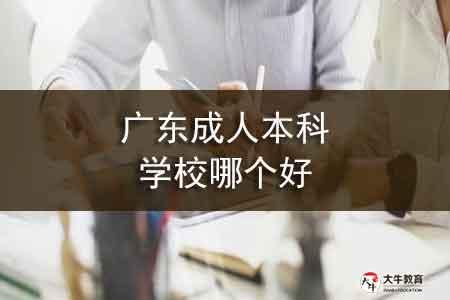 广东成人本科学校哪个好