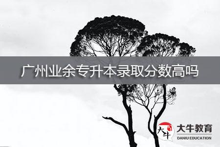 广州业余专升本录取分数高吗-第1张图片-专升本网