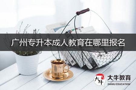 广州专升本成人教育在哪里报名-第1张图片-专升本网