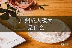 广州成人夜大是什么