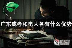 广东成考和电大各有什么优势