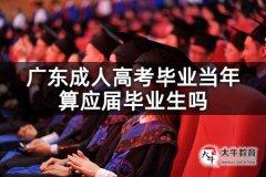 广东成人高考毕业当年算应届毕业生吗