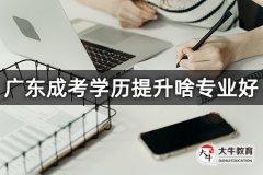 广东成考学历提升啥专业好