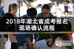 2018年湖北省成考报名现场确认流程