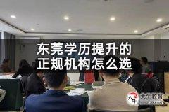东莞学历提升的正规机构怎么选