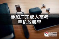 参加广东成人高考手机放哪里