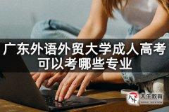 广东外语外贸大学成人高考可以考哪些专业