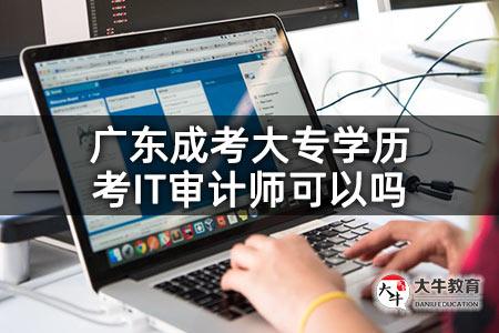 广东成考大专学历考IT审计师可以吗