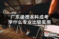 广东函授本科成考学什么专业比较实用