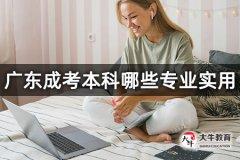 广东成考本科哪些专业实用