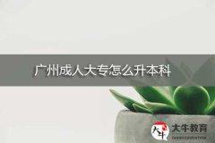 广州成人大专怎么升本科