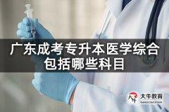 广东成考专升本医学综合包括哪些科目