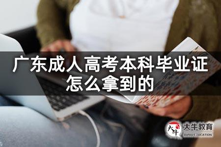 广东成人高考本科毕业证怎么拿到的