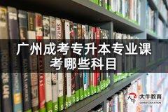 广州成考专升本专业课考哪些科目