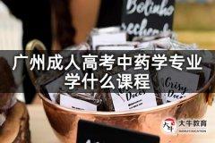 广州成人高考中药学专业学什么课程