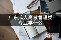 广东成人高考管理类专业学什么