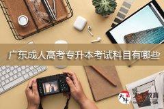 广东成人高考专升本考试科目有哪些