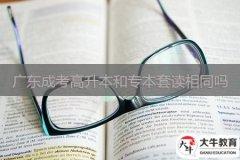 广东成考高升本和专本套读相同吗
