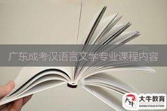 广东成考汉语言文学专业课程有什么内容