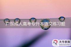 广东成人高考专升本语文练习题