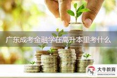 广东成考金融学在高升本里考什么