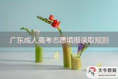 广东成人高考志愿填报录取规则如何