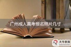 广州成人高考报名照片几寸