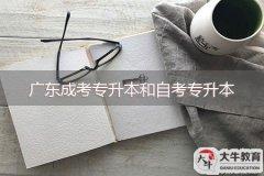 广东成考专升本和自考专升本选择哪个好