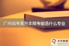 广州成考高升本报考能选什么专业