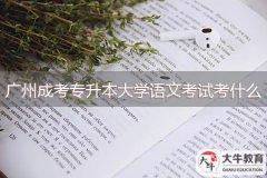 广州成考专升本大学语文考试考什么