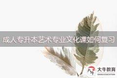 广州成人专升本艺术专业文化课如何复习