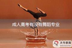 成人高考有没有舞蹈专业